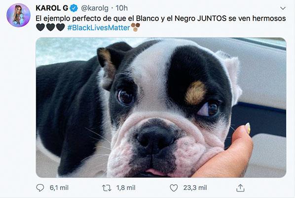 Karol G es víctima de críticas tras comparar a perro con lucha ...